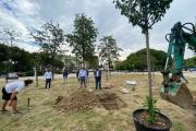 """Anche nei Giardini Virgilio fioriranno i """"sakura"""", Melucci: «Ogni albero che piantiamo è un atto d'amore per Taranto»"""