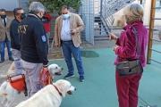Inclusione con i cani, nelle scuole di Tamburi, Città Vecchia e Paolo VI: parte il progetto dell'amministrazione Melucci