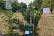 In via Fratelli Rosselli sono state installate alcune ecotrappole per topi.
